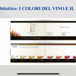 Corso sommelier 2020 vino e olio