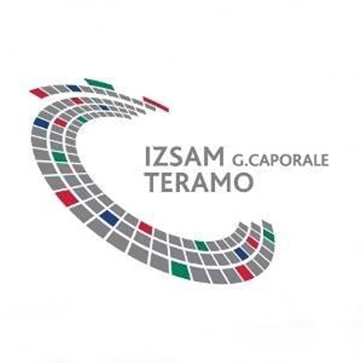 Davide Calcedonio Di Giacinto entra nel CdA dell'IZSAM foto