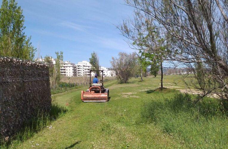 San Salvo: lavori in corso nelle aree a verde e lungomare