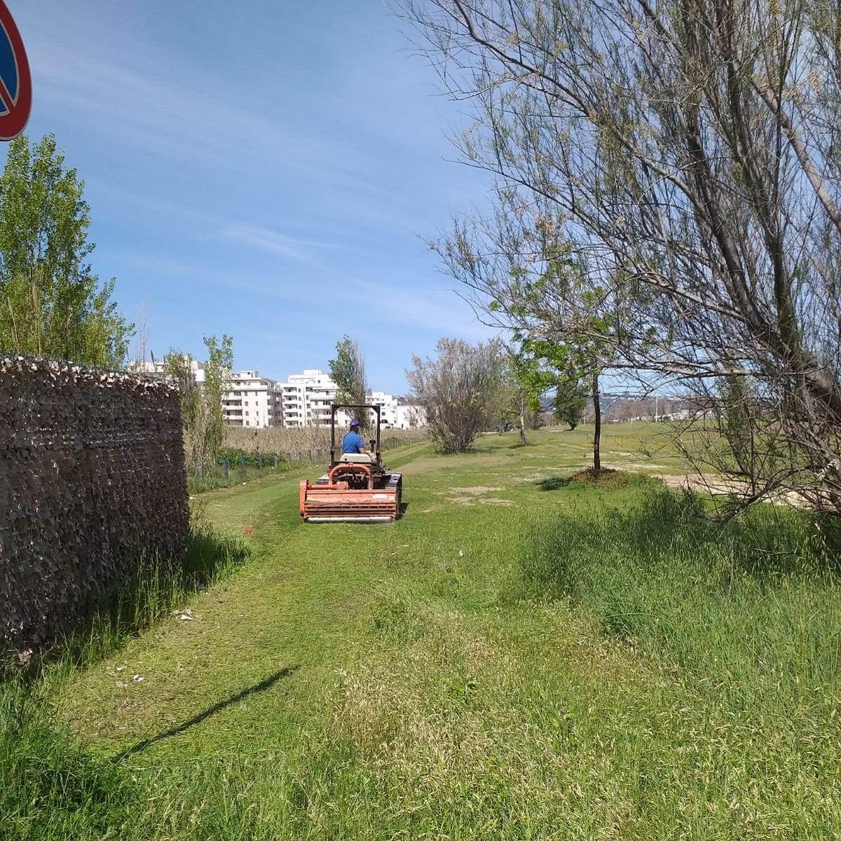 San Salvo lavori in corso nelle aree a verde e lungomare foto