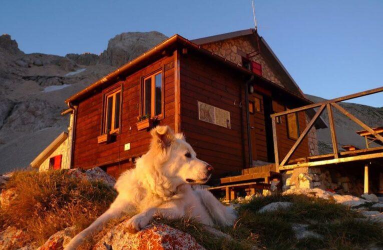 Gli alpini sanificano il rifugio Franchetti