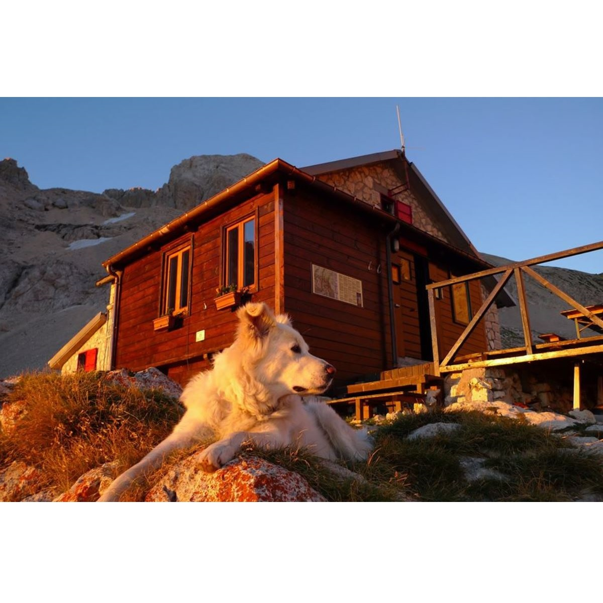 Gli alpini sanificano il rifugio Franchetti foto