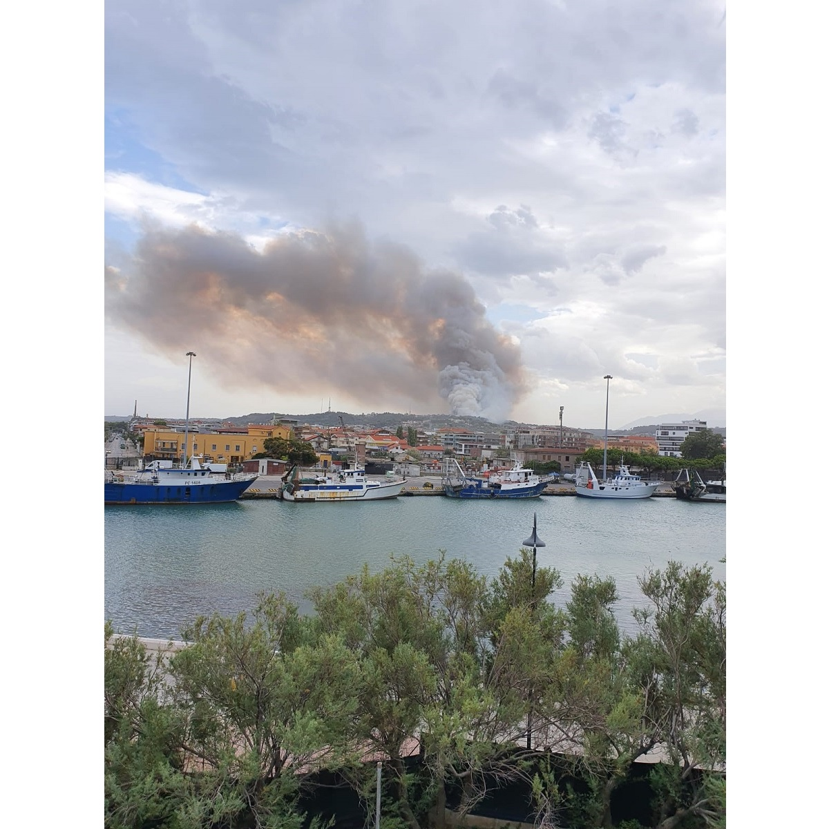 Pescara Colle Renazzo brucia foto