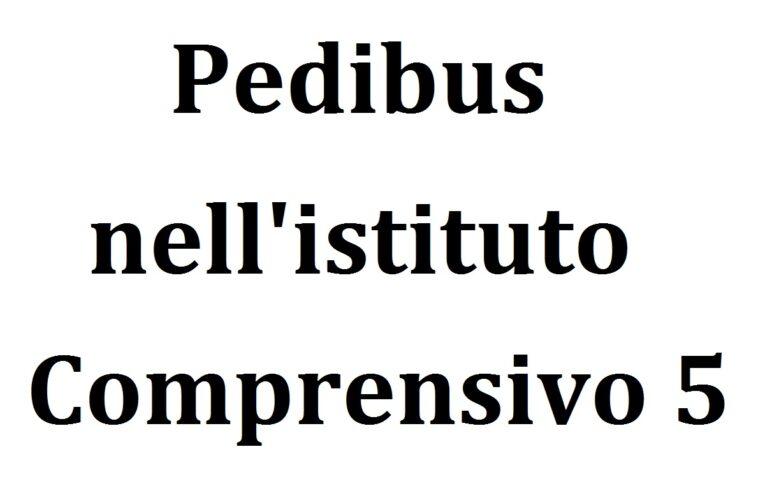 Il Progetto Pedibus nell'Istituto Comprensivo 5 di Pescara