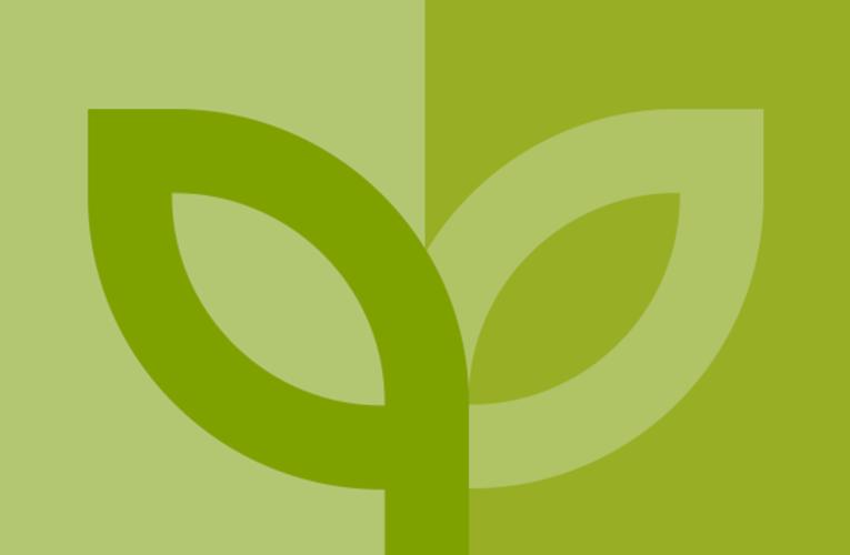 Linea Verde a Pescara il 27 settembre 2020