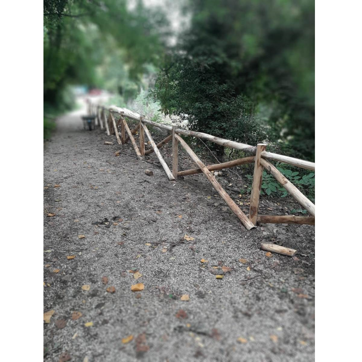 Teramo lavori al Parco Fluviale del Tordino foto