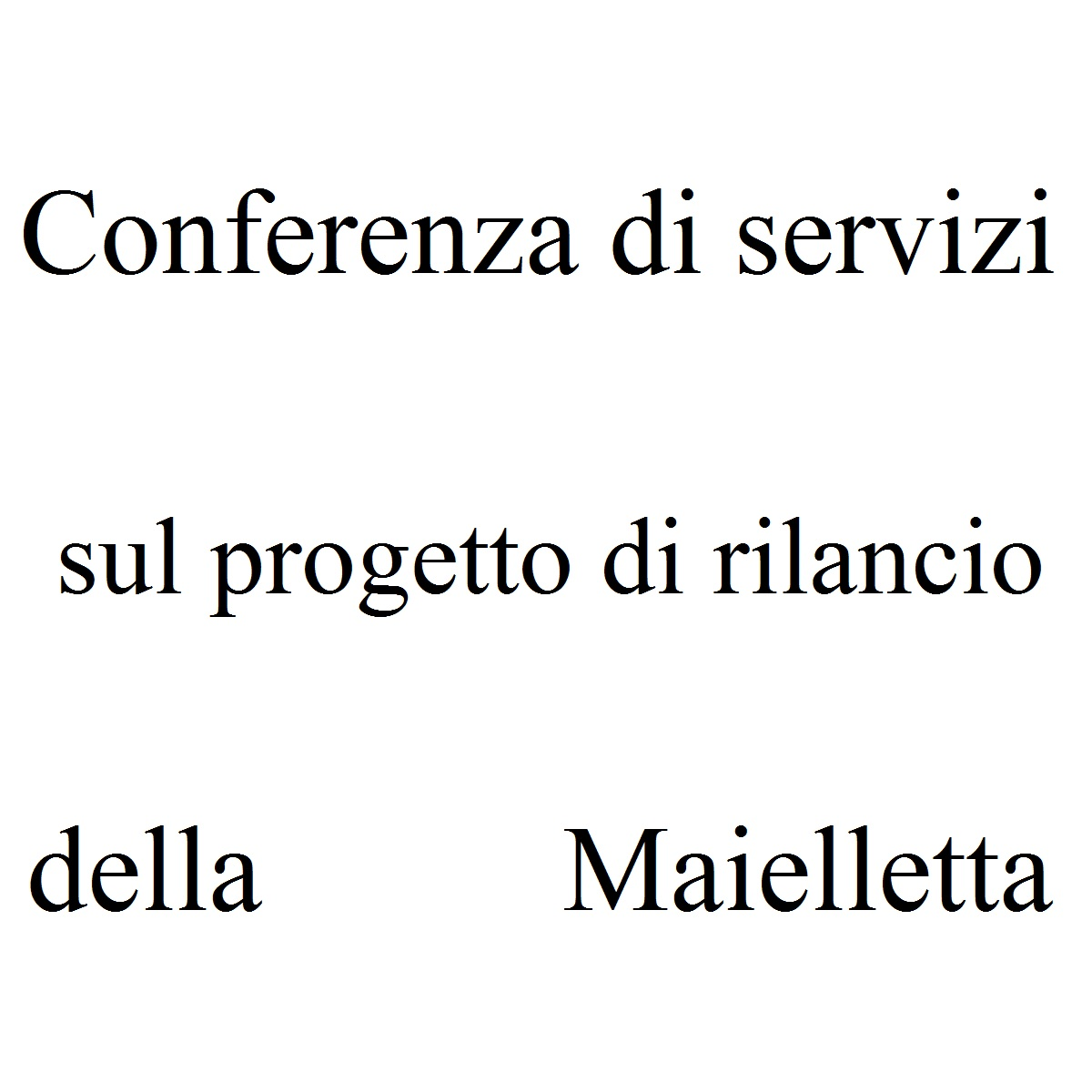 Conferenza di servizi sul progetto di rilancio della Maielletta foto