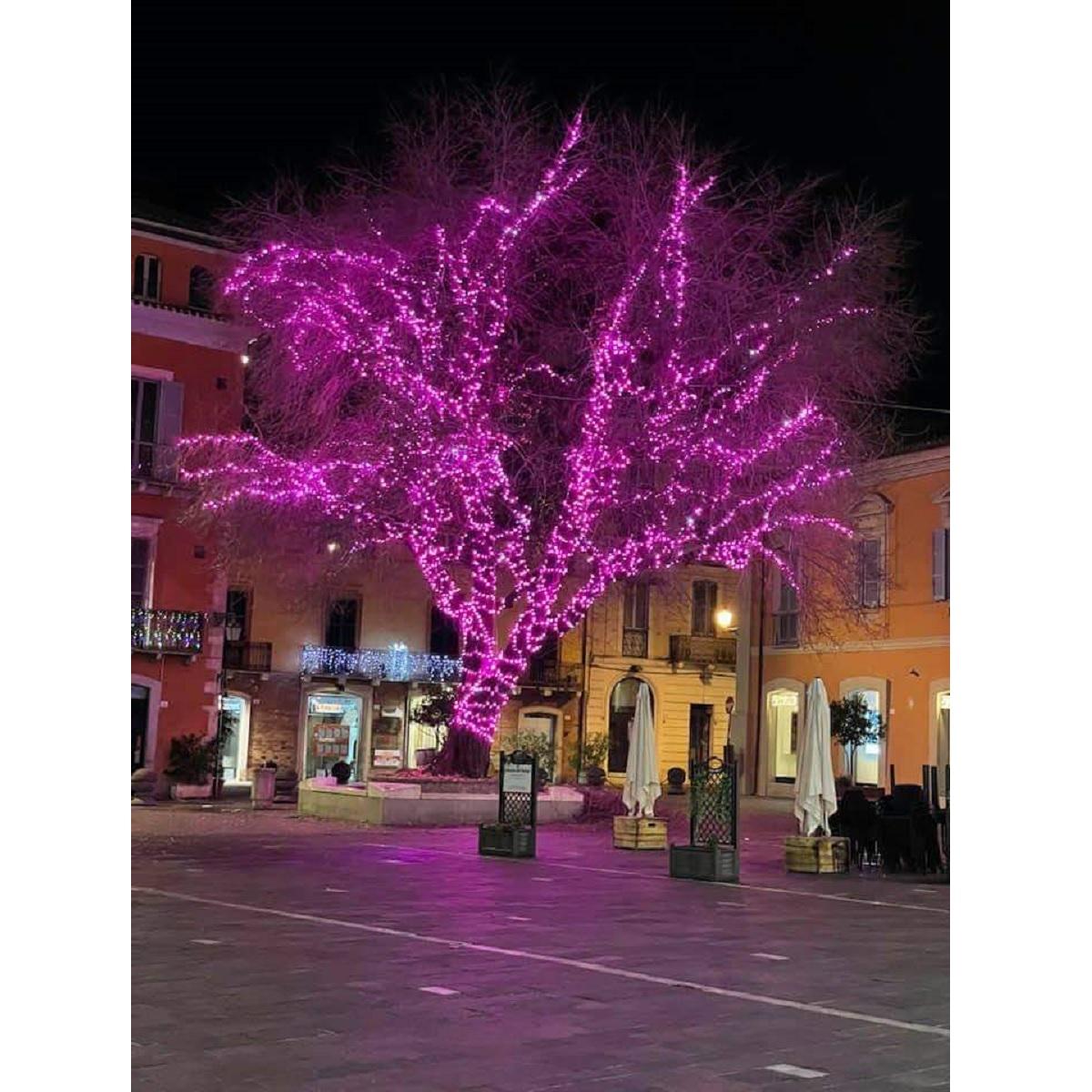 In Piazza Martiri a Teramo si accende la luce di Natale foto