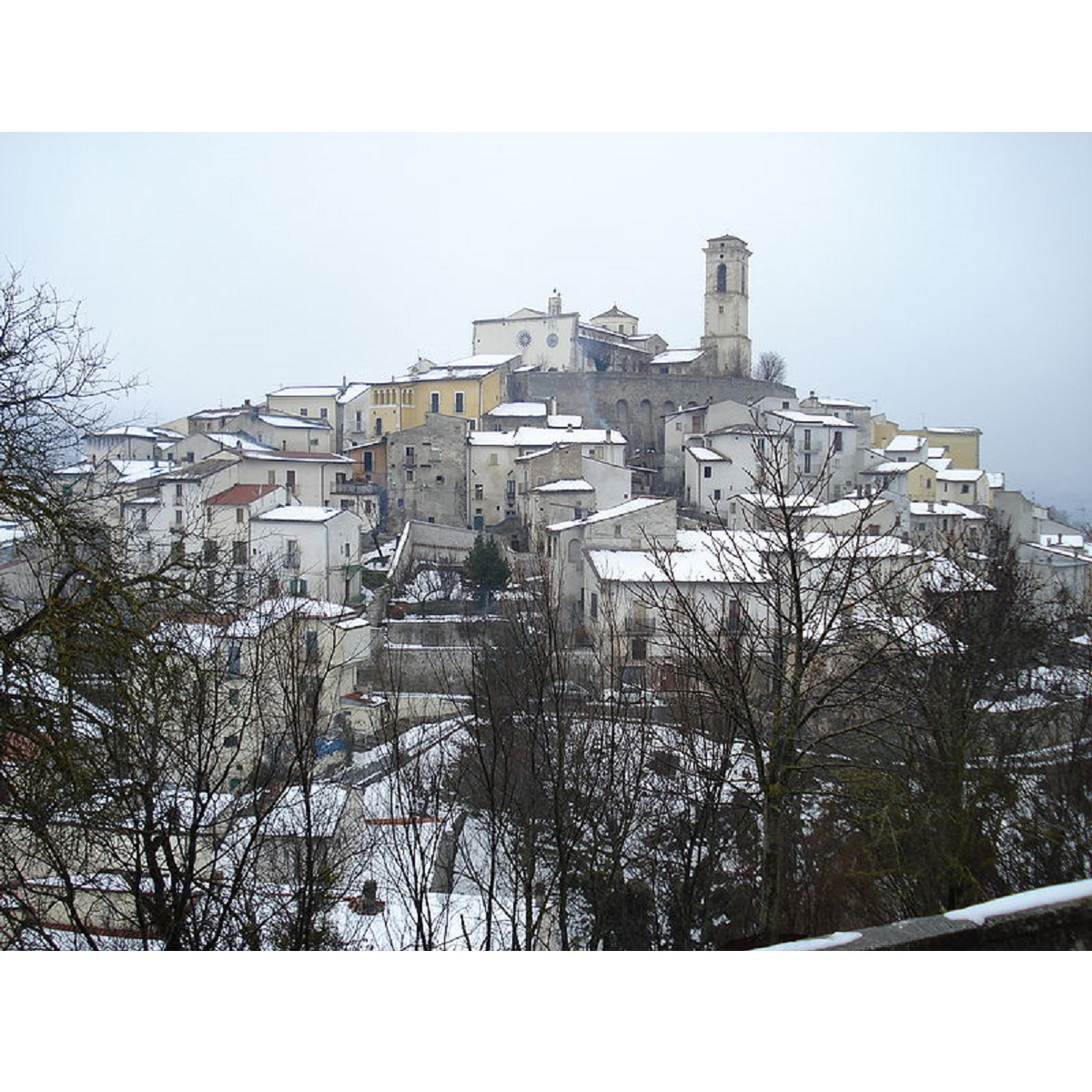 La TERNA taglia i rami delle piante in Goriano Sicoli foto