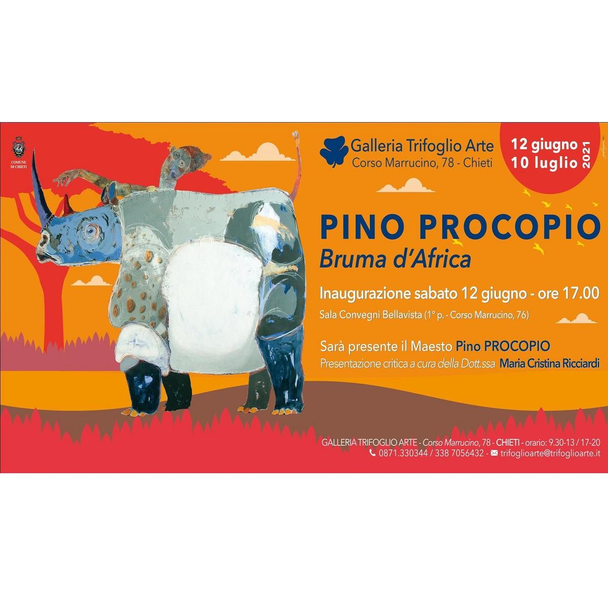 Inaugurazione Mostra Pino Procopio Bruma d'Africa foto
