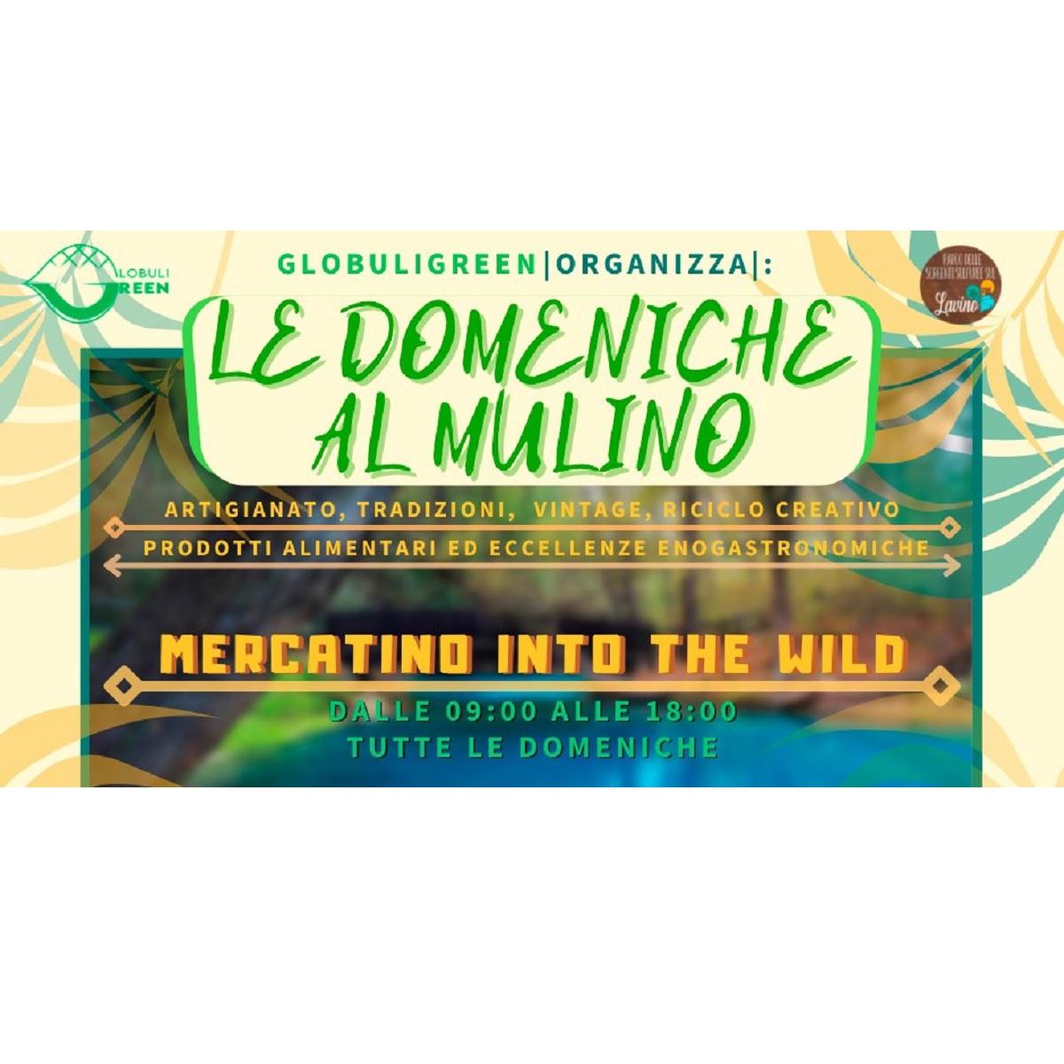 Le domeniche al mulino - Mercatino into the wild a Scafa foto