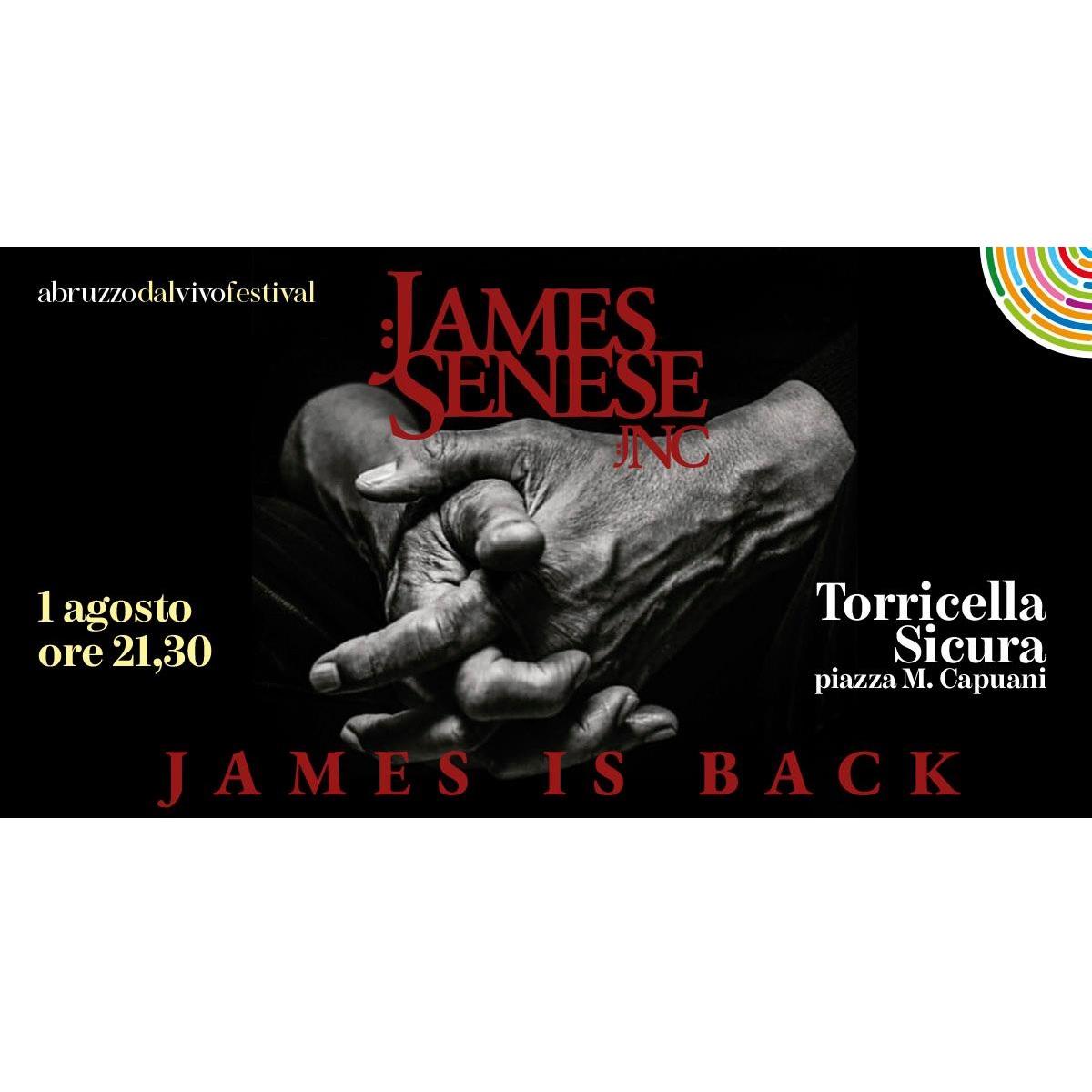 James Senese a Torricella Sicura 1 agosto 2021 foto